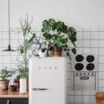 8 cách để làm ấm nhà bếp nhờ cây – Cocoon trang trí: blog